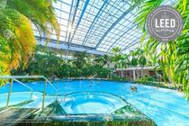 Therme - The Palm
