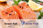 Ocean Fish 1