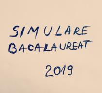 Simulare Bac 2019