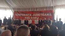 Dragnea PSD Gorj