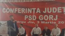 PSD alegeri Gorj
