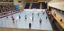 FC Porto vs HC Dobrogea Sud