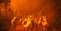 Incendii de vegetatie in Spania