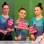 Gimnastele Romaniei la CE din Polonia