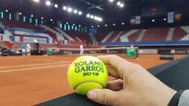 Mingea de joc de la Rouen - Roland Garros 2019
