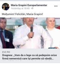 Postare Maria Grapini