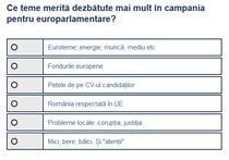 Sondaj teme alegeri PE