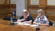 Doina Gradea in Comisia parlamentara