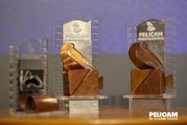 Premiile Pelicam 2019