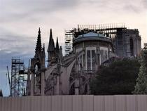 Notre-Dame (8)