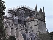 Notre-Dame (19)