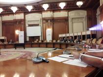 Imagine de la audierile de marti pentru Consiliul Fiscal