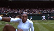 Serena Williams, cazatura la fileu