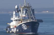 Nava Proactiva Open Arms