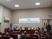 Reprezentantul Guvernului (incadrat) in sedinta CES
