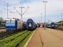 Trenuri