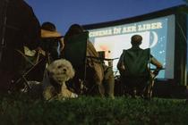 Cinema în Aer Liber: foto Teo Tudose