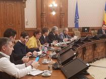 Dezbatere Parlament
