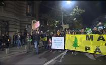 Mars de protest fata de taierile ilegale de paduri