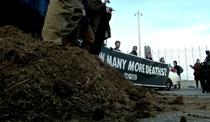 Protest ecologisti