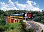 Tren pe singura linie de pasageri din Mexic