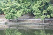 alergatori parcuri Bucuresti