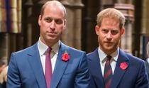 Printii William si Harry