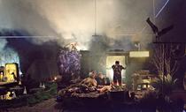 Casa cu suricate