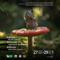 #4Rusia - file din natură