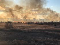 incendiu Delta Vacaresti