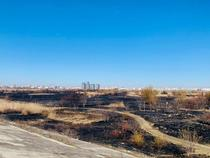 Incendiu Delta Vacaresti - februarie 2020 - 3