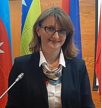 Alina Botezat, cercetator