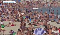 Australieni la plaja