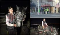 Sergiu Ion Ciobotariu - Făt Frumos și calul său de basm