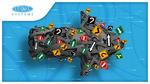 Cum organizăm haosul cu aplicațiile de management al flotei auto
