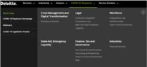 Noua structură a secțiunii online create de Deloitte cu analize și recomandări