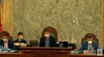 Ședință Senat, proiecte de lege pe perioada epidemiei