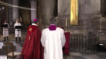Vinerea neagra la Notre-Dame