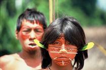 Indigeni Yanomami