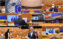 membrii PE
