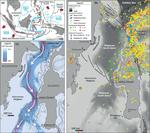 Analiza tectonica