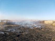 Incendiu Peris 7-8 aprilie 2020 - 4