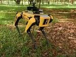 SPOT, cainele robot