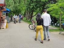 In parcul IOR