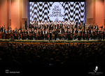 Opera Femeia fara Umbra - Andrada Pavel