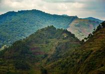 Distrugere habitat, Uganda
