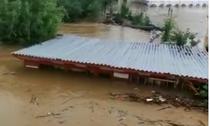 Inundatie judetul Timis