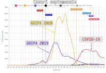 Gripa 2020 vs Covid-19 - cazurile pe saptamana