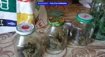 Cannabis gasit in locuinta lui Pierre Yves Ragot