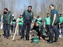 Orban, campanie împădurire